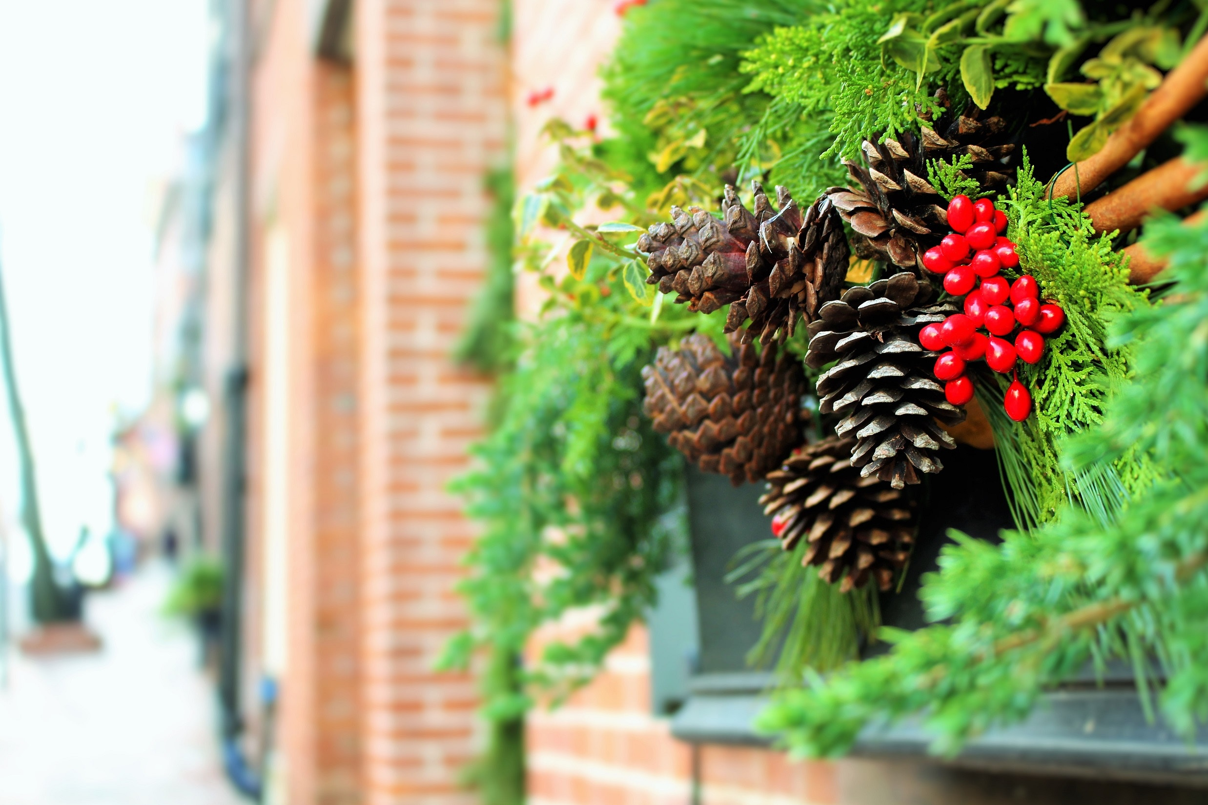 Holiday decorations on a door